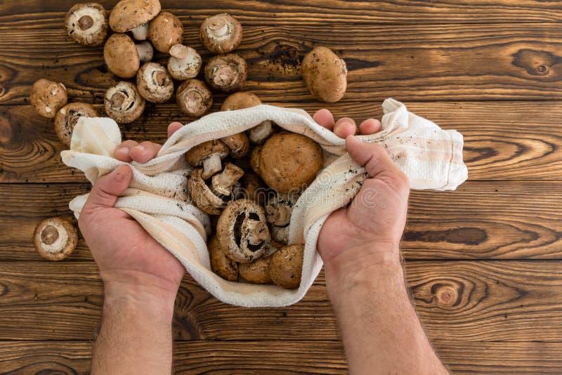 Equipaggi la tenuta dei funghi crudi freschi in un panno immagini stock