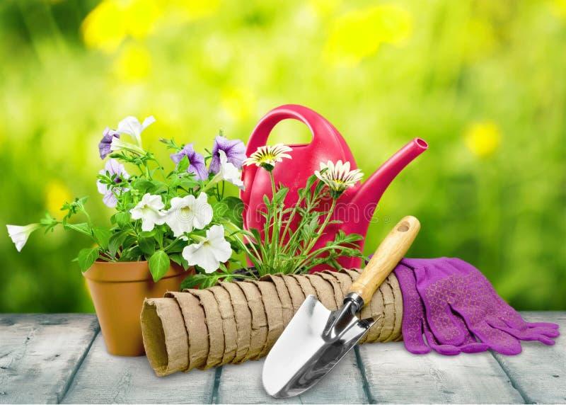 Equipamento de jardinagem fotografia de stock