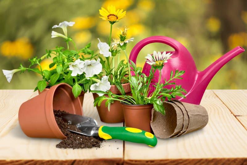 Equipamento de jardinagem foto de stock
