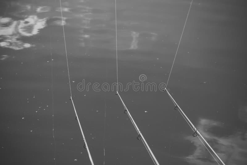 Equipamentos, cabos para dobrar no rio, lago, lagoa, de água doce foto de stock royalty free