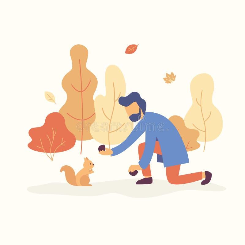 Equipe a alimentação de um esquilo no parque com humor da queda As árvores alaranjadas e amarelas, as folhas de queda estão no fu ilustração stock