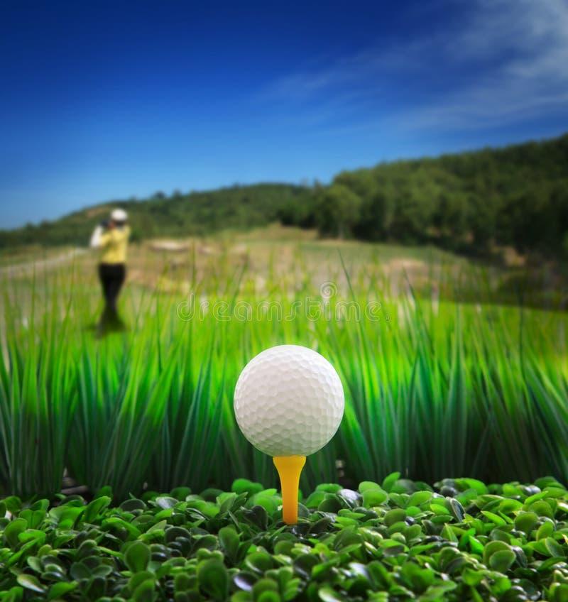 Equipe a condução do golfe e feche-a acima da esfera de golfe no gree fotos de stock royalty free