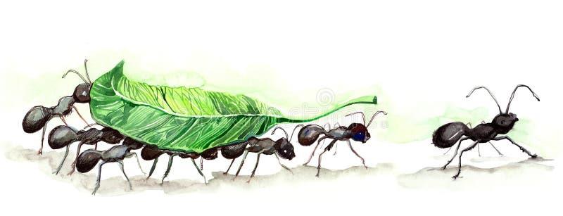 Equipe das formigas ilustração do vetor