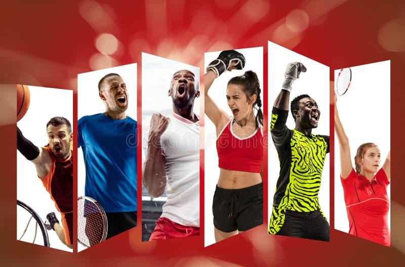 Equipe de esporte nova contra o fundo vermelho, colagem imagem de stock royalty free