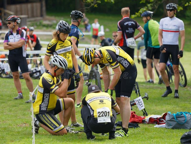 Equipe de Mountainbike que fixa a bicicleta antes do começo na raça imagens de stock