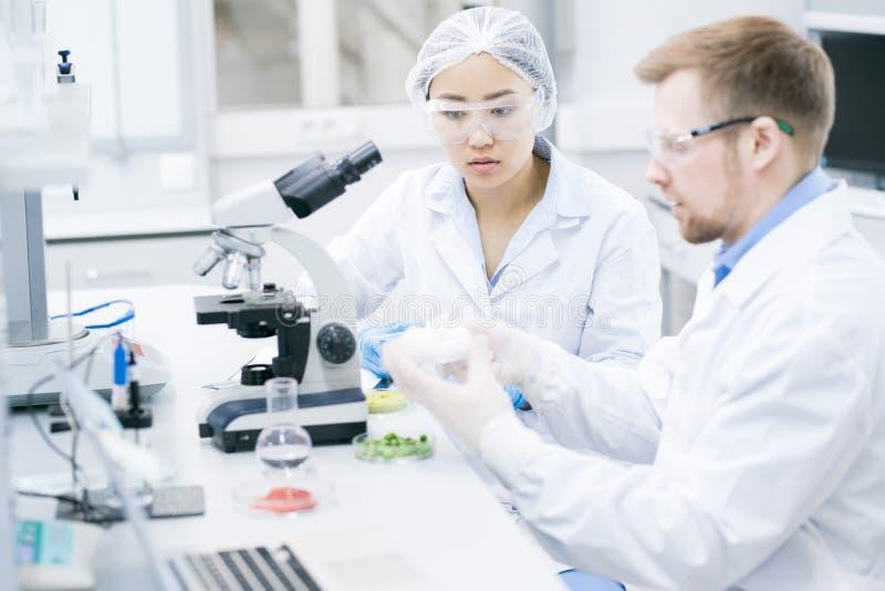 Equipe dos cientistas que fazem a pesquisa imagens de stock