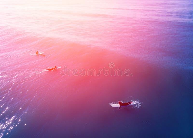 A equipe dos surfistas está preparando-se para montar a bordo a onda grande, água azul, verão fotografia de stock