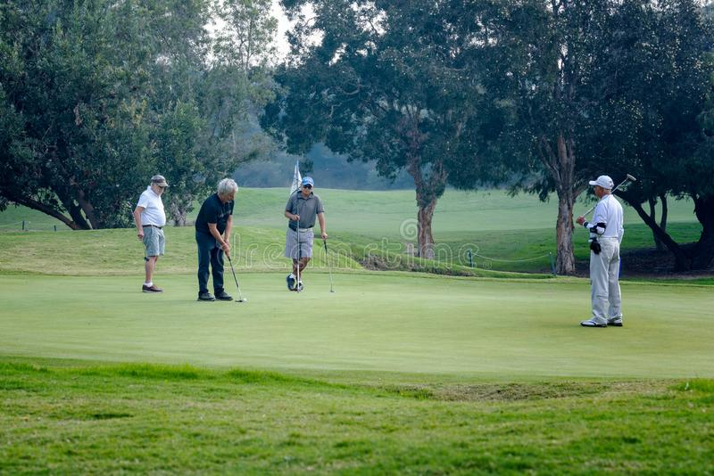 Equipe golfing social dos homens no verde de colocação imagens de stock royalty free