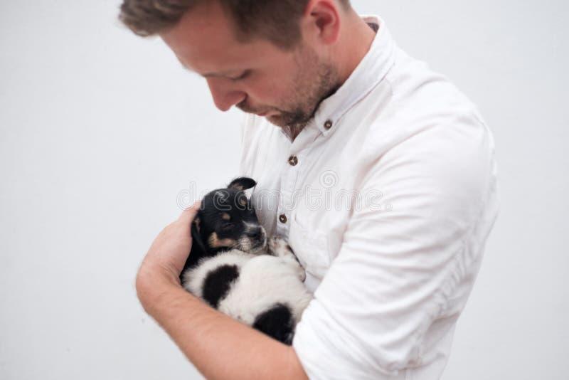 Equipe guardar um cachorrinho pequeno em suas mãos fotografia de stock