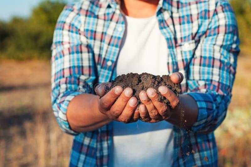 Equipe o fazendeiro que mantém a planta nova nas mãos contra o fundo da mola Conceito da ecologia do Dia da Terra Feche acima do  fotos de stock