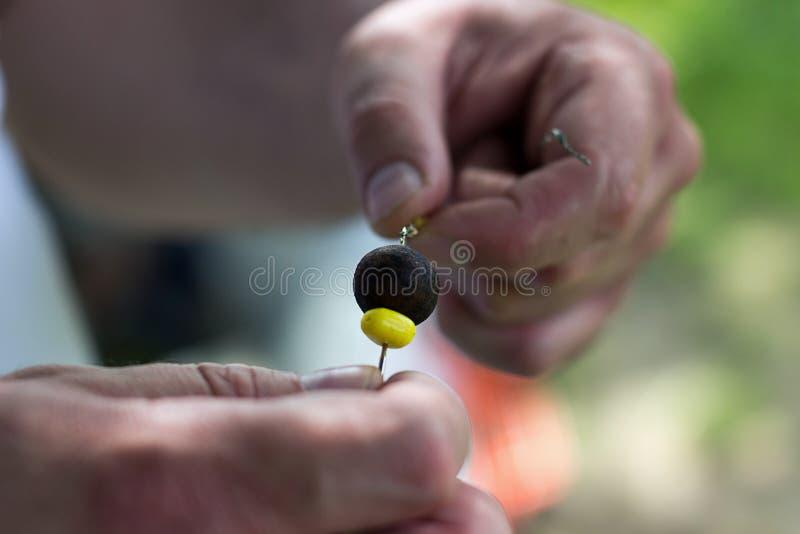 Equipe o homem do boilie da pesca da perfuração de mão que prepara o cabelo de Boili, sopro para trás equipam, gancho da carpa foto de stock royalty free