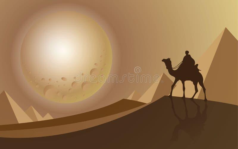 Equipe o passeio um camelo que olha ao máximo a lua no deserto imagens de stock
