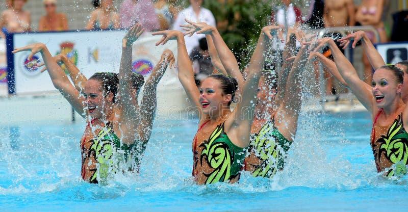Equipe synchro dos nadadores dos EUA fotos de stock