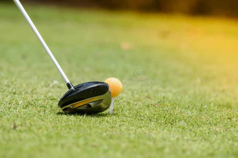 The golf ball is hit. Equipment for golf. On the green lawn Ready for play stock image