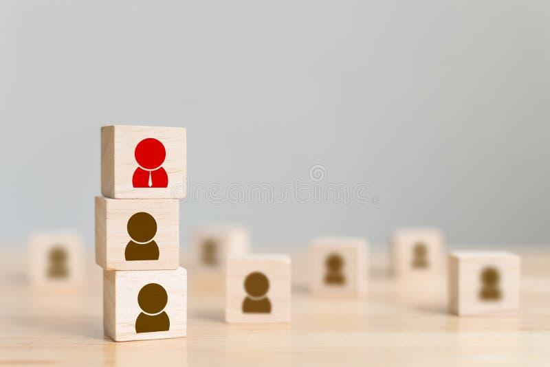 Equipo co de la estructura del negocio de la gestión de recursos humanos y del reclutamiento fotografía de archivo libre de regalías