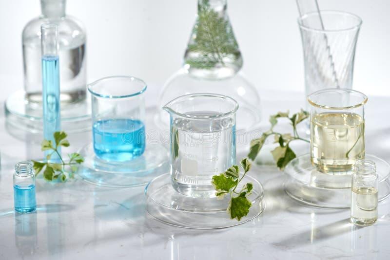 Equipo de cristal del laboratorio con los ingredientes naturales en el fondo blanco foto de archivo libre de regalías