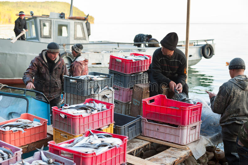 Equipo de la pesca en el trabajo fotografía de archivo libre de regalías