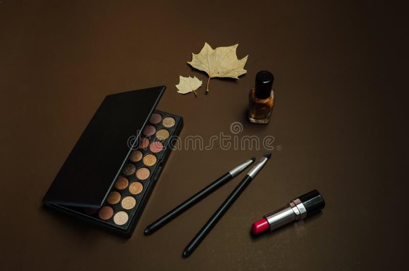 Equipo del maquillaje con tonos marrones imagen de archivo libre de regalías