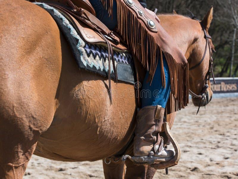 Equipo del rodeo para la vaquera o el vaquero fotografía de archivo libre de regalías