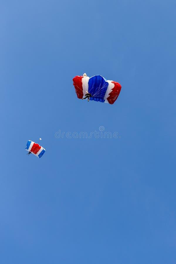 Equipo del Skydiver en el paracaídas colorido que se desliza después de salto libre de la caída fotografía de archivo libre de regalías