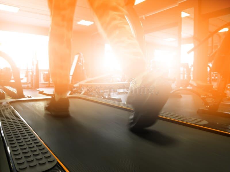 Equipo para entrenar en el gimnasio foto de archivo libre de regalías