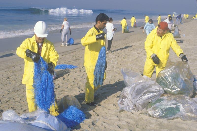 Equipos de trabajadores ambientales que organizan esfuerzos de la limpieza del derramamiento de aceites en Huntington Beach, Cali fotografía de archivo