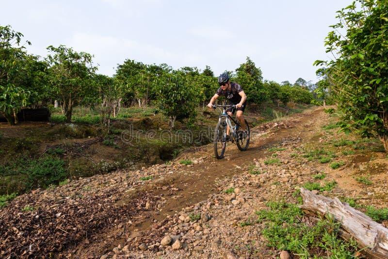 Equitação áspera em Costa Rica foto de stock royalty free