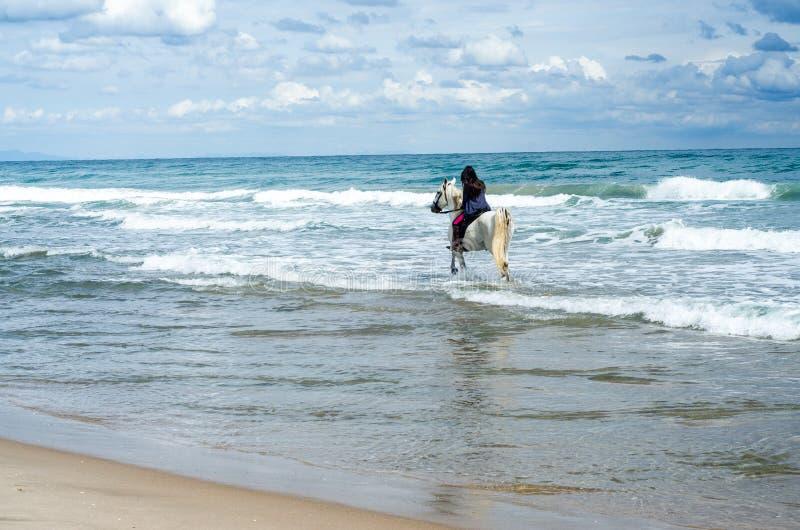 Equitação da jovem mulher ao longo da praia em seu cavalo branco fotos de stock