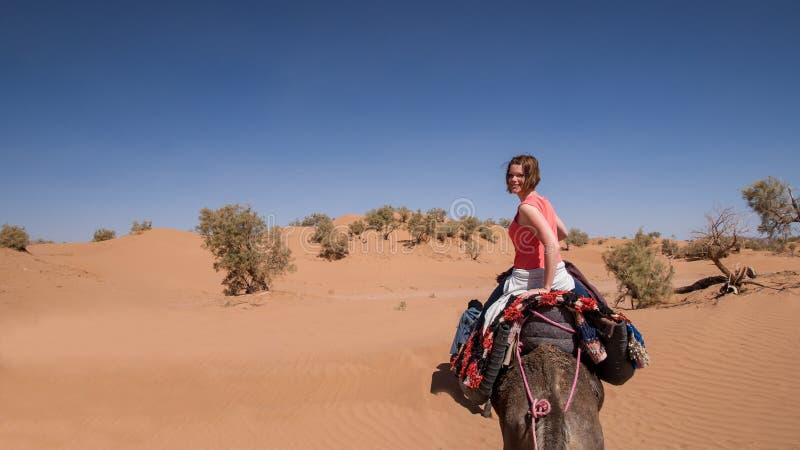 Equitação da jovem mulher em um dromedário no deserto marroquino da areia foto de stock