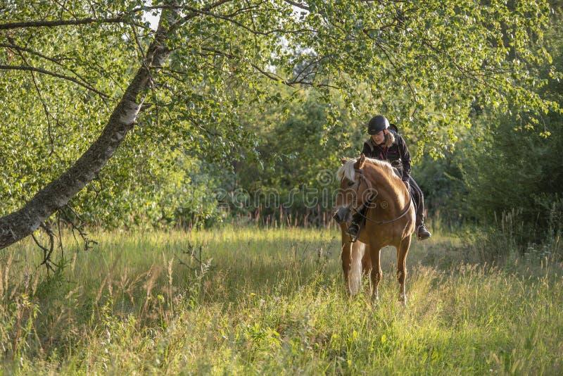 Equitação da mulher no por do sol fotografia de stock