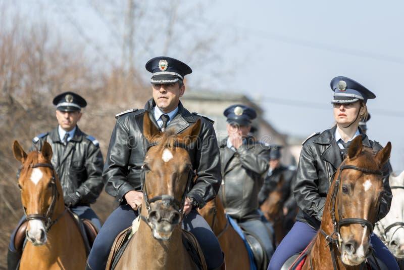 Equitação da polícia do cavalo imagens de stock royalty free