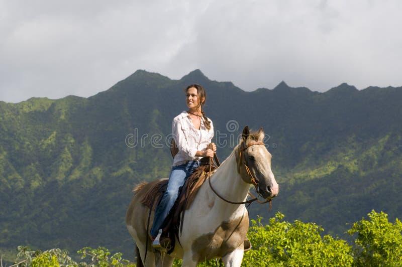 Equitação de cavalo da mulher fotos de stock