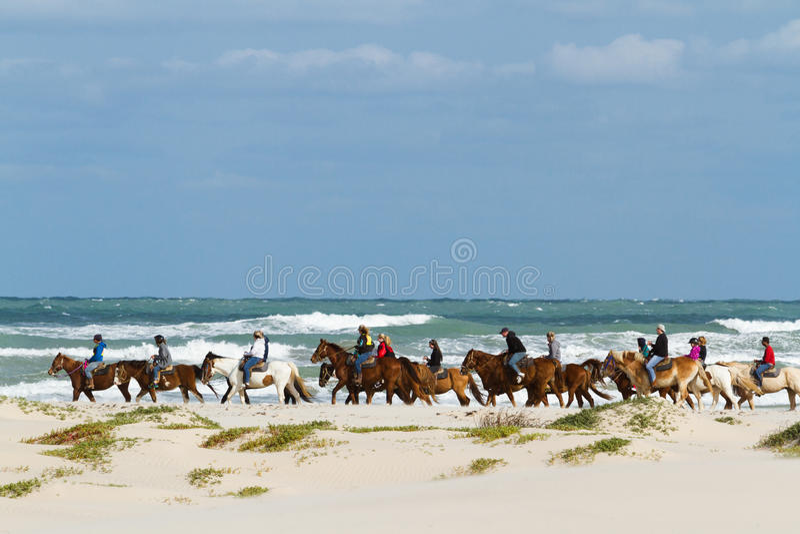 Equitação de Horesback imagens de stock