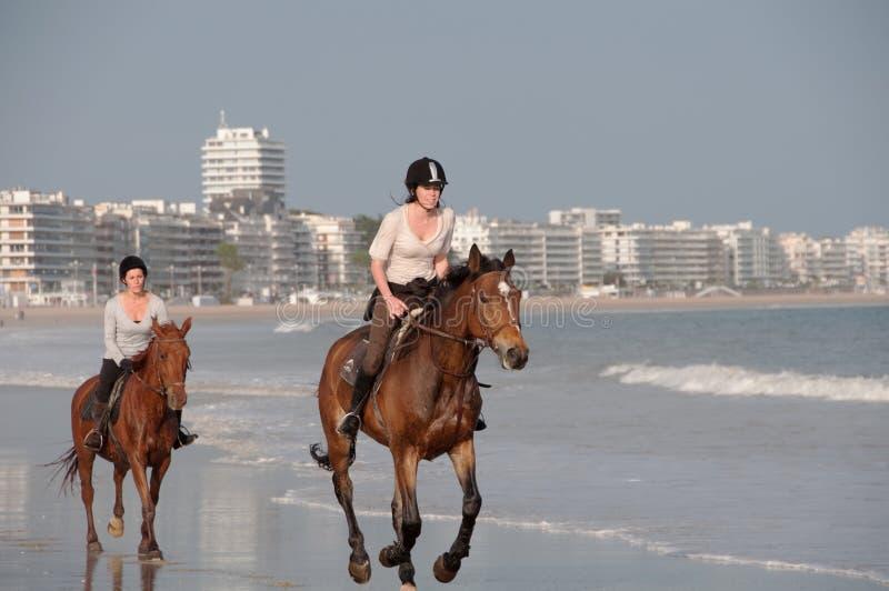 Equitação de Horseback na praia em La Baule, France fotos de stock