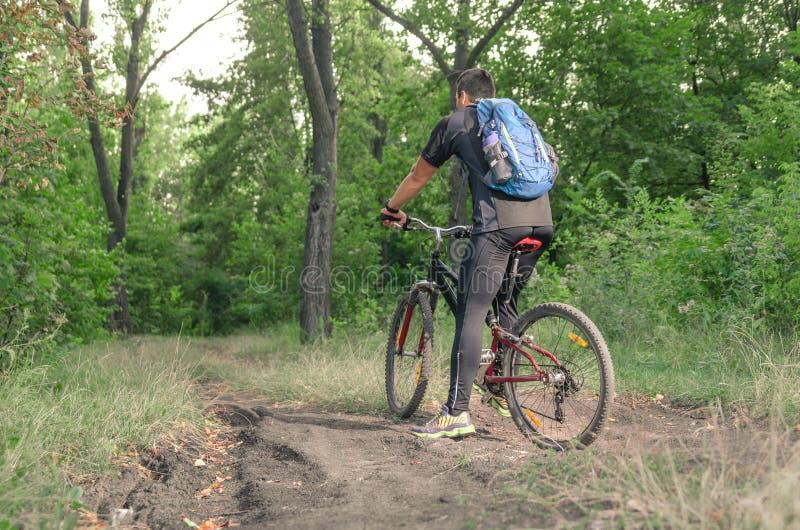 Equitação de Mountainbiker na bicicleta no parque do verão no dia ensolarado fotos de stock