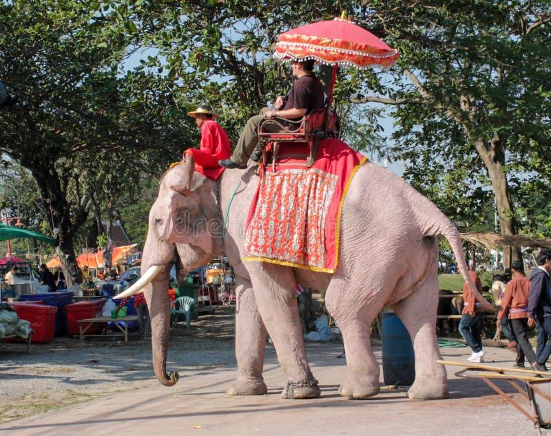 Equitação do elefante em Ásia, Tailândia fotografia de stock