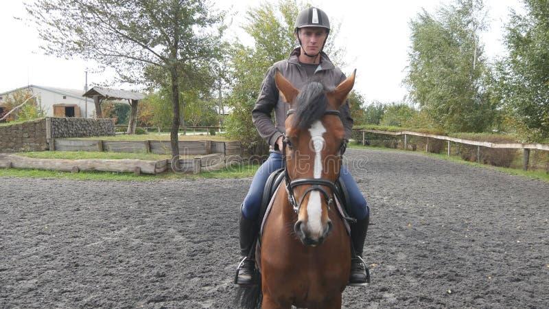 Equitação do homem novo exterior Jóquei masculino no cavalo que anda no manege na exploração agrícola no dia nebuloso escuro Natu fotos de stock royalty free