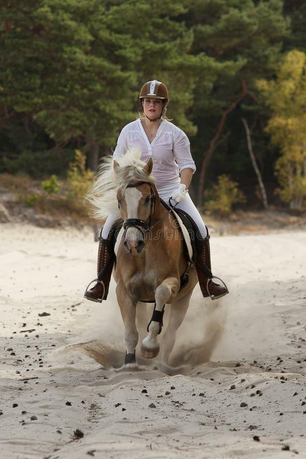 Equitação nas dunas imagens de stock