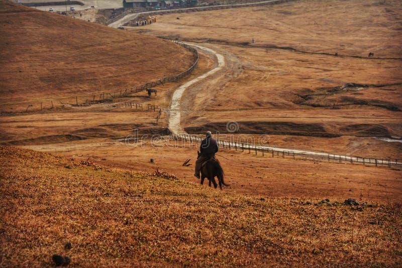 Equitação nos regaços da natureza imagem de stock royalty free