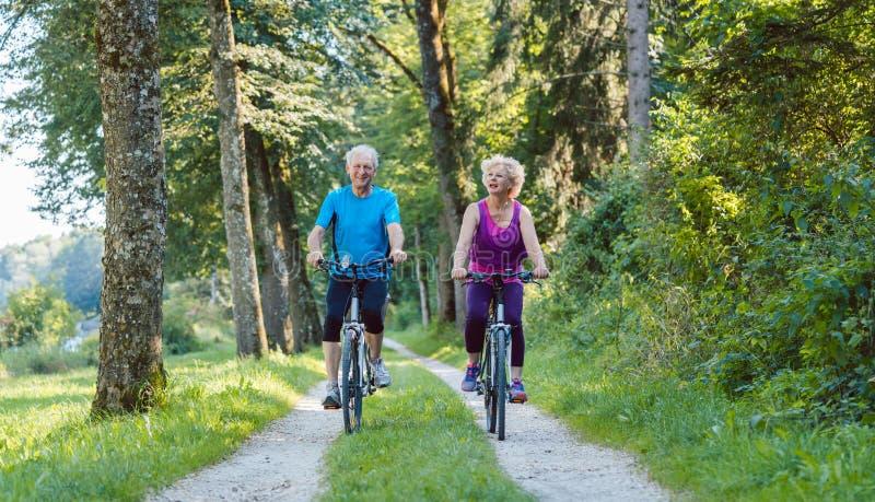A equitação superior feliz e ativa dos pares bicycles fora no p fotografia de stock