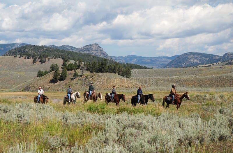 Parque nacional de Yellowstone, EUA fotos de stock