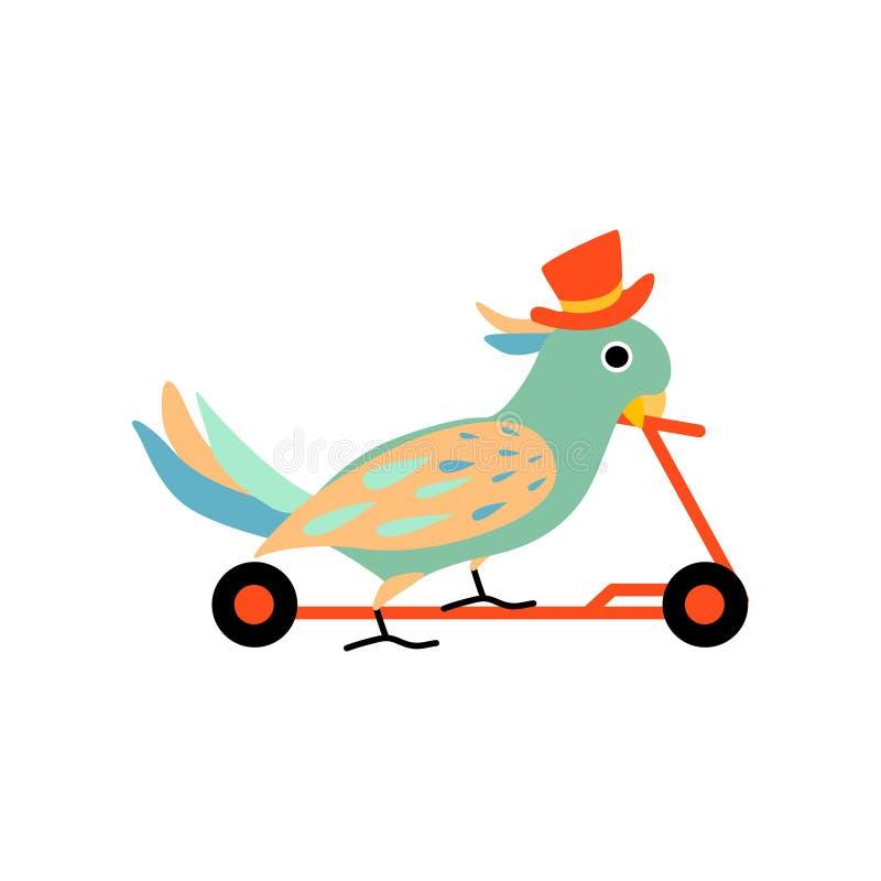 Equitação vestindo do chapéu alto do papagaio no 'trotinette' do pontapé, animal engraçado bonito que executa na ilustração do ve ilustração do vetor