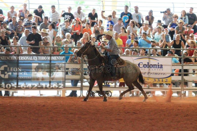 Equitación del vaquero en el rodeo fotos de archivo