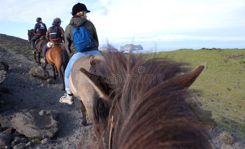 Equitación en Islandia fotos de archivo