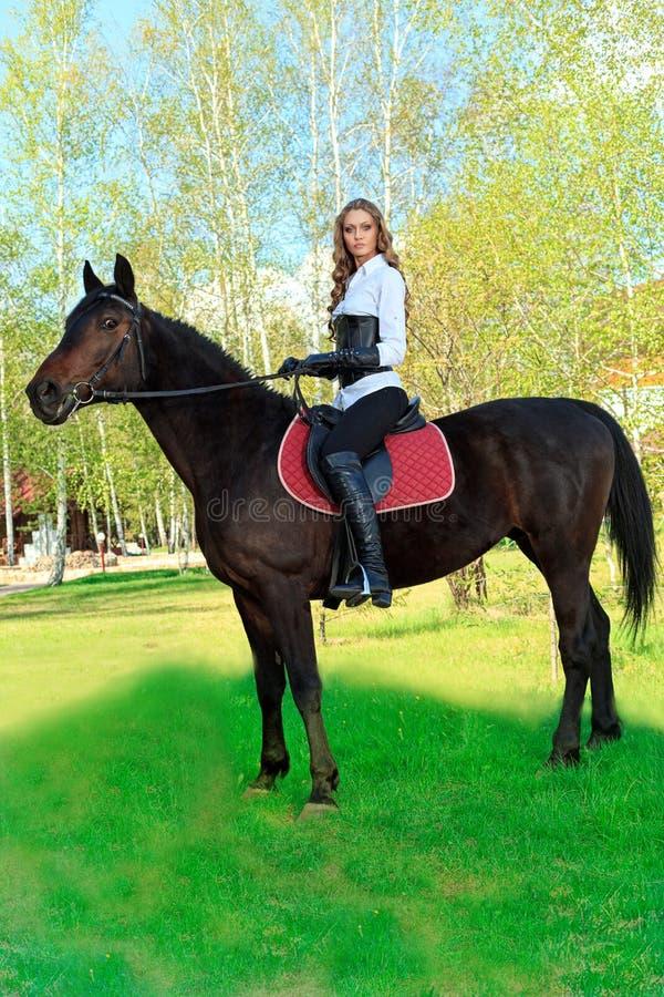 equitation royaltyfria foton