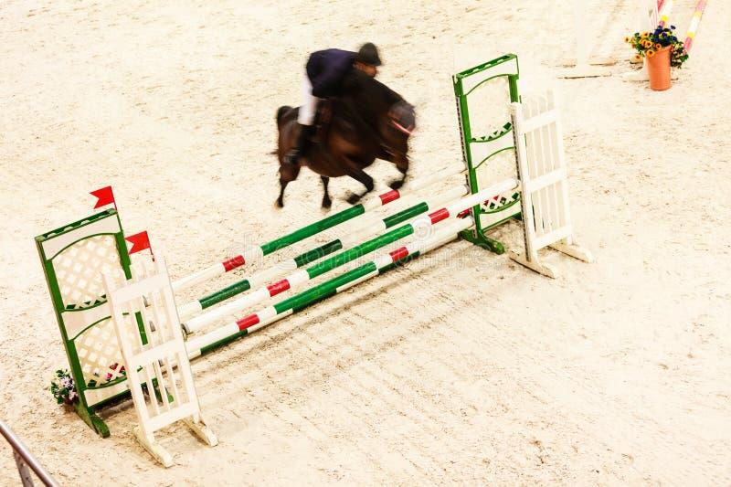 equitation mostre o salto, o cavalo e o cavaleiro sobre o salto foto de stock royalty free
