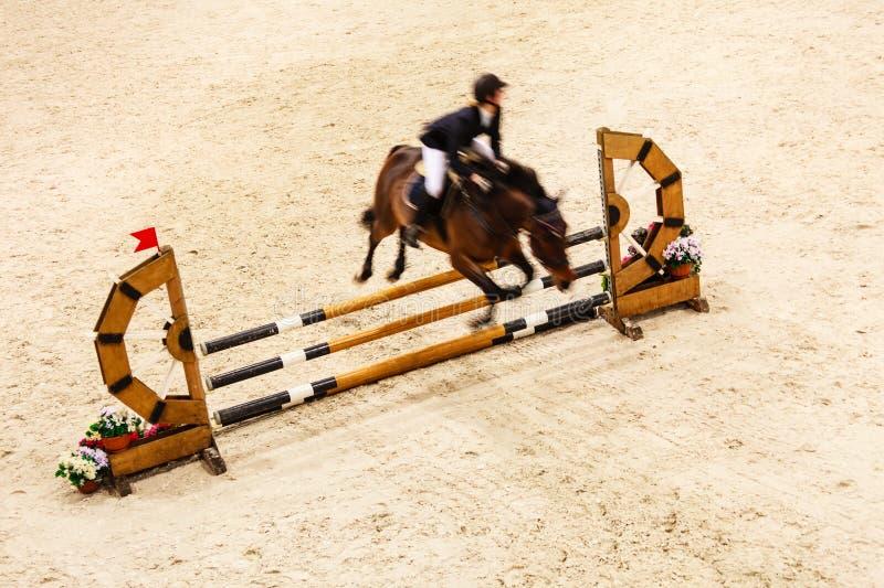equitation mostri il salto, il cavallo ed il cavaliere sopra il salto fotografia stock libera da diritti