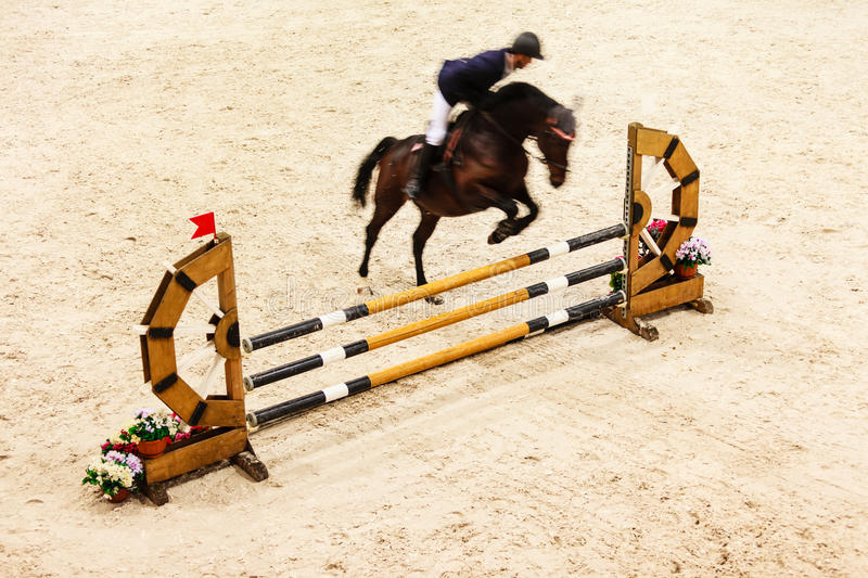 equitation visa banhoppningen, hästen och ryttaren över hopp royaltyfria bilder