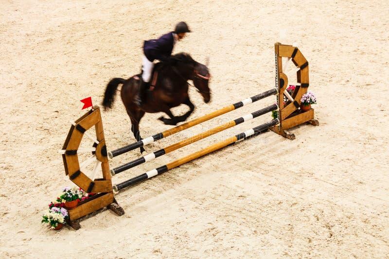 equitation visa banhoppningen, hästen och ryttaren över hopp fotografering för bildbyråer