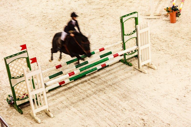 equitation visa banhoppningen, hästen och ryttaren över hopp royaltyfri fotografi